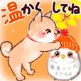 秋*柴犬とフクロウ♡