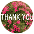 Convey a thank you along with the flower