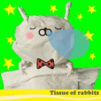 Tissue of rabbits