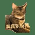 YU_20201012031718