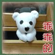 メンキュウちゃん7-写真集