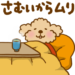 Putaro the Poodle Autumn and Winter