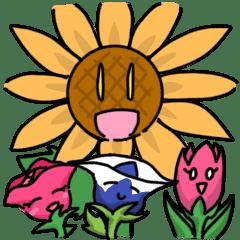 花壇のお花たち