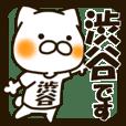 SHIBUTANI-cat