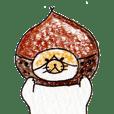 Everyday cat 1 <Chestnut>