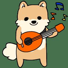 Pomeranian Animation Chinese Vol2
