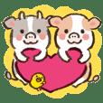 Honwaka-biyori cows