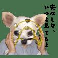 【チワマン2】