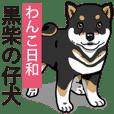 Wanko-Biyori Puppy of Black Shiba Inu