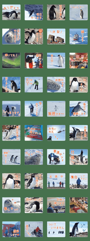 「観測隊員と南極の仲間たち for Business」のLINEスタンプ一覧