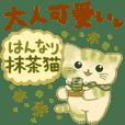 Hannari Matcha Cat
