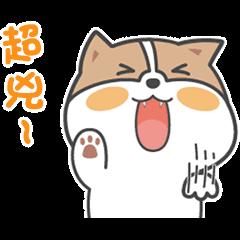 萌萌寶貝狗的快樂日常 3