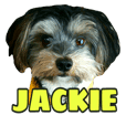 smile puppy Jackie