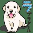 Wanko-biyori puppy Labrador retriever