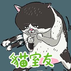 貓室友插畫貼圖14