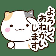 まるい三毛猫3