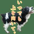 oreo's sticker