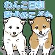 Wanko-Biyori Puppy of Shiba Inu
