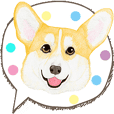 corgi motion sticker