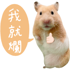 大胖鼠雪寶頹廢篇