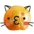 Orange Orange cat Of your oranges