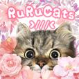 RuRu's cats.