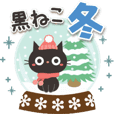 *Gentle Winter* Adult cute black cat