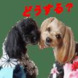 yuzuponzu Sticker 2016