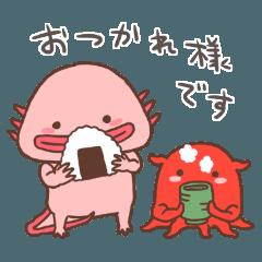 Axolotl and Opisthoteuthis depressa
