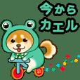 花よりわんこ3(ダジャレ、死語、柴犬)