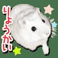 ハムスター☆だいふく ver.1