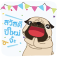 Kaoneaw The Pug HAPPY NEW YEAR