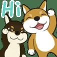 柴犬兄弟 - 愛玉とセンソウ 1 - 日常会話