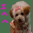 NANAスタンプ2016(シオンもね)