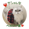 Stylish Persian cat Riki(English ver.)