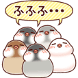 Java sparrow animated