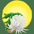 Flowers exhort
