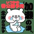 Bear Sticker Kase
