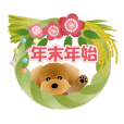 Cute! Toy Poodle 4