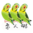 Parrots love to speak
