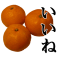 This is a Mikan