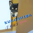 KUROSHIBA JIYURI photo