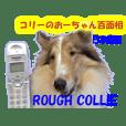 コリーのおーちゃん百面相 日本語編