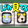 Shizuoka Dialect Shizunabi2