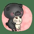 Mei & Pino