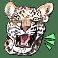 ワイルドアニマル:水彩的動物描写
