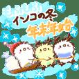 Fluffy budgerigar's winter new year Xmas