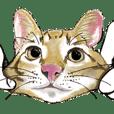 little cat mayn version sticker