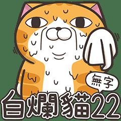 ランラン猫 22