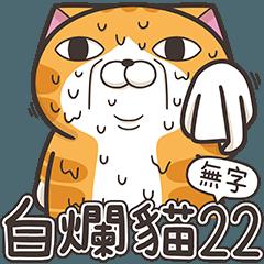 白爛貓22☆無字版☆